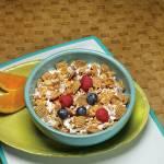 Crunchy Cinnamon Cereal – 110 calpack