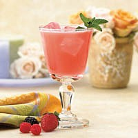 Wildberry Fruit Drink – 100 calpack