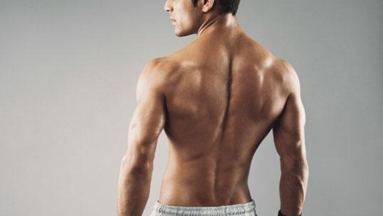 sculpsure for the lower and upper back